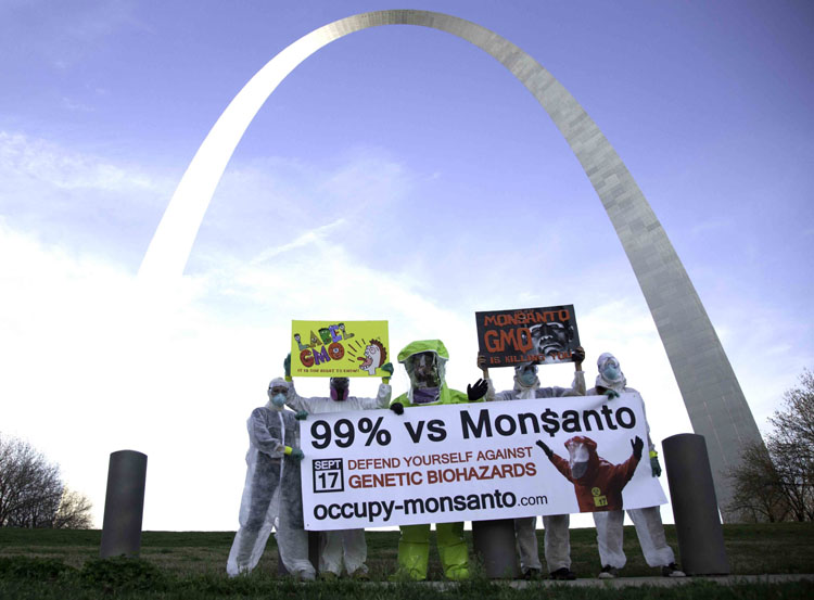 archwide web Photos of Occupy Monsantos St. Louis Free Speech Blitz St. Louis signs Photos Missouri highways highway overpass GCU Direct Action cars banners