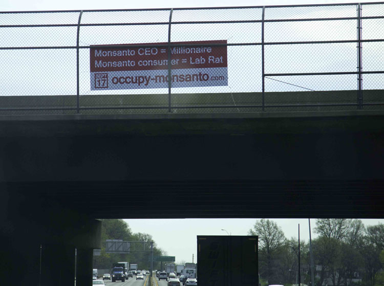 labrat web Photos of Occupy Monsantos St. Louis Free Speech Blitz St. Louis signs Photos Missouri highways highway overpass GCU Direct Action cars banners