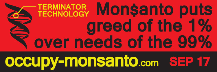 occupy monsanto banner3 Printable Occupy Monsanto Banners web ready vinyl superweeds signs Resource PDF Monsanto lab rat graphics gmo banners 99%