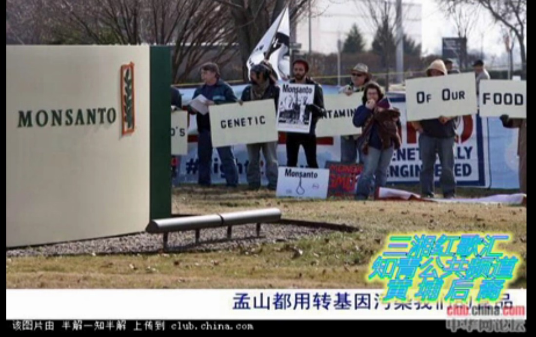 china video screen grab Anonymous Chinese Activist Fighting Ministry of Agriculture & Health with Inspiring Video video Inspiration Good Guys gmo China Cheats