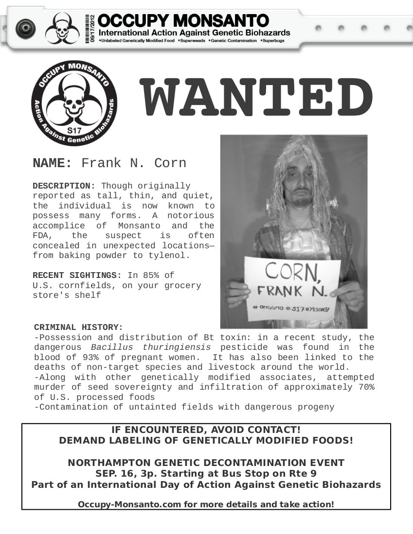 1 wanted INCIDENT REPORT: Genetic Contamination Found in Northampton, MA Street Theater Protest Northampton Massachusetts GMO Corn Genetic Contamination GCU Frankencorn Frank N. Food Field Agent Demonstration Bt toxin