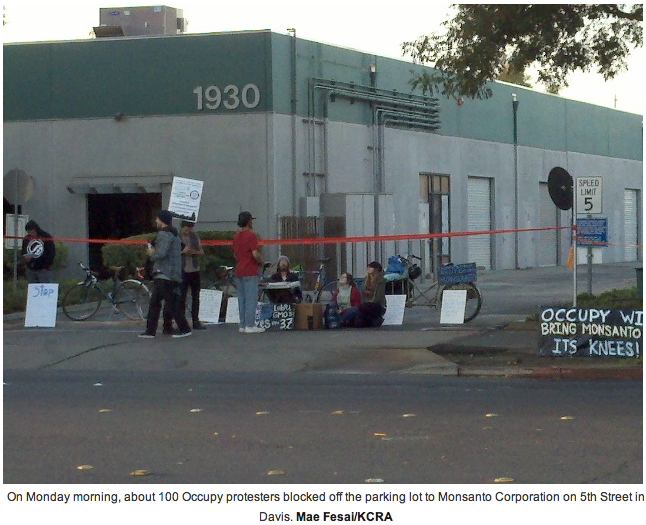 9 17 mae fesai KCRA KCRA: Davis protest marks one year anniversary of Occupy Woodland video TV Sacramento Protest Police Occupy Monsanto KCRA gmo Genetic Crime Scene GCU Direct Action Demonstration Davis CA