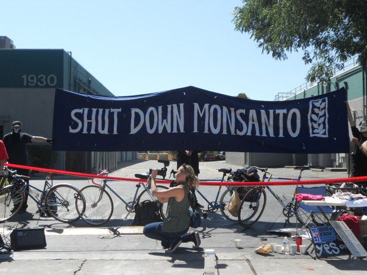 DSCN1860 e1348171399723 INCIDENT REPORT: Photos & Videos of the 2nd Shutdown of Monsantos Davis, CA facility Wounded Knee United Farm Workers shut down Protest Monsanto Miss GMO Demonstration Davis Cindy Sheehan California CA Billy Bragg Al Rojas