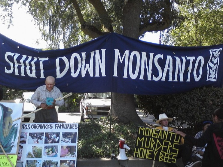 Occupy Mansanto 3 e1348171464591 INCIDENT REPORT: Photos & Videos of the 2nd Shutdown of Monsantos Davis, CA facility Wounded Knee United Farm Workers shut down Protest Monsanto Miss GMO Demonstration Davis Cindy Sheehan California CA Billy Bragg Al Rojas