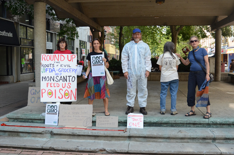 occupy monsanto ecowomb ithaca5 INCIDENT REPORT: Photos from the Ithaca, New York Decontamination Event USDA Tumors Toxic soy Soil RoundUp Protest Proposition 37 Prop 37. PCBs parents parenting Occupy Monsanto NY Non GMO Project New York Kids Ithaca Commons GMO Labeling gmo Frankenfood fracking Family Eco Womb drugs dioxin Demonstration Decontamination Event Corn chemical company canola cancer autoimmune diseases asthma allergies Agent Orange ADHD ADD