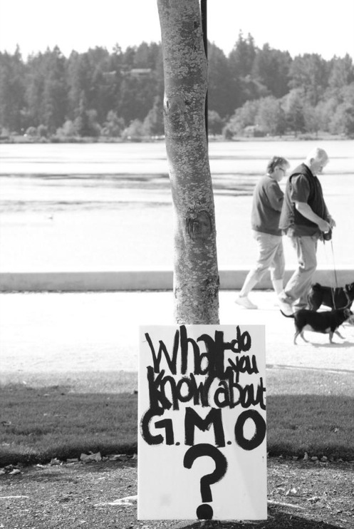occupy monsanto olympia13 INCIDENT REPORT: Photos from GCU Field Agents at Lake Olympia, Washington Washington WA signs Protest Olympia Lake Olympia GMO Summit Demonstration