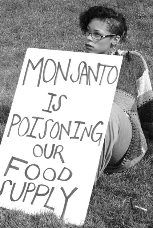 occupy monsanto olympia6 INCIDENT REPORT: Photos from GCU Field Agents at Lake Olympia, Washington Washington WA signs Protest Olympia Lake Olympia GMO Summit Demonstration