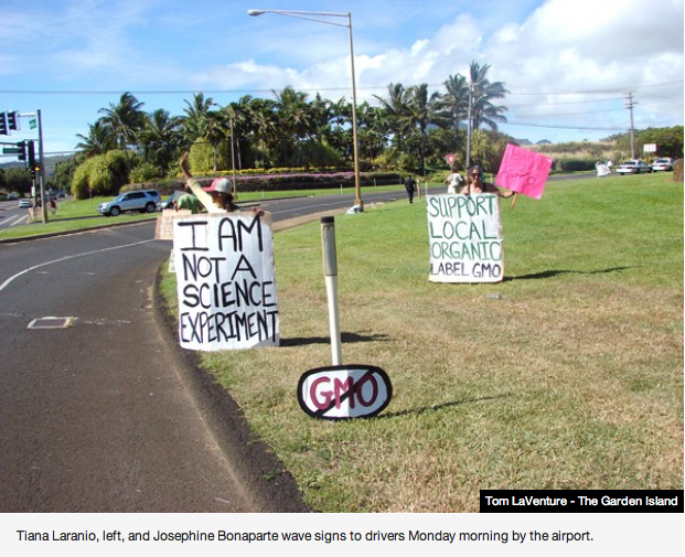 occupy monsanto tom laventure the garden island The Garden Island: Kauai is Ground Zero for Occupy GMO Wendy Raebeck Vietnam USDA Tiana Laranio Syngenta SPAM Sol Kahn self empowerment Russell Kokubun rice Research Pioneer Hi Bred pesticides Michael Schultz Lopaka Baptista Kekaha keiki Kauai Josephine Bonaparte International Food Information Council Hawaii Department of Agriculture Hawaii Board of Agriculture Hawaii Ground Zero GMO Free gmo Fern Holland Eastside Dupont ConAgra Foods BASF Atrizine Agent Orange 
