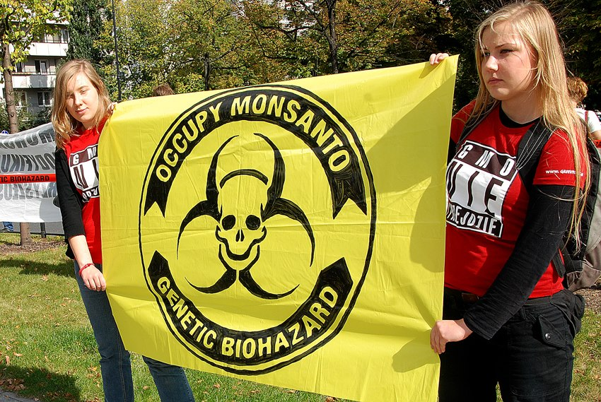 occupy monsanto warsaw14 INCIDENT REPORT: Photos & Video from outside of the U.S. Embassy in Warsaw, Poland youtube Warszawie Warsaw Protest Polish Poland Pikieta Picket Monsanto Lobbying Free Speech English dyplomacji diplomacy Demonstration Decontamination Event amerykańskiej ambasadą USSA