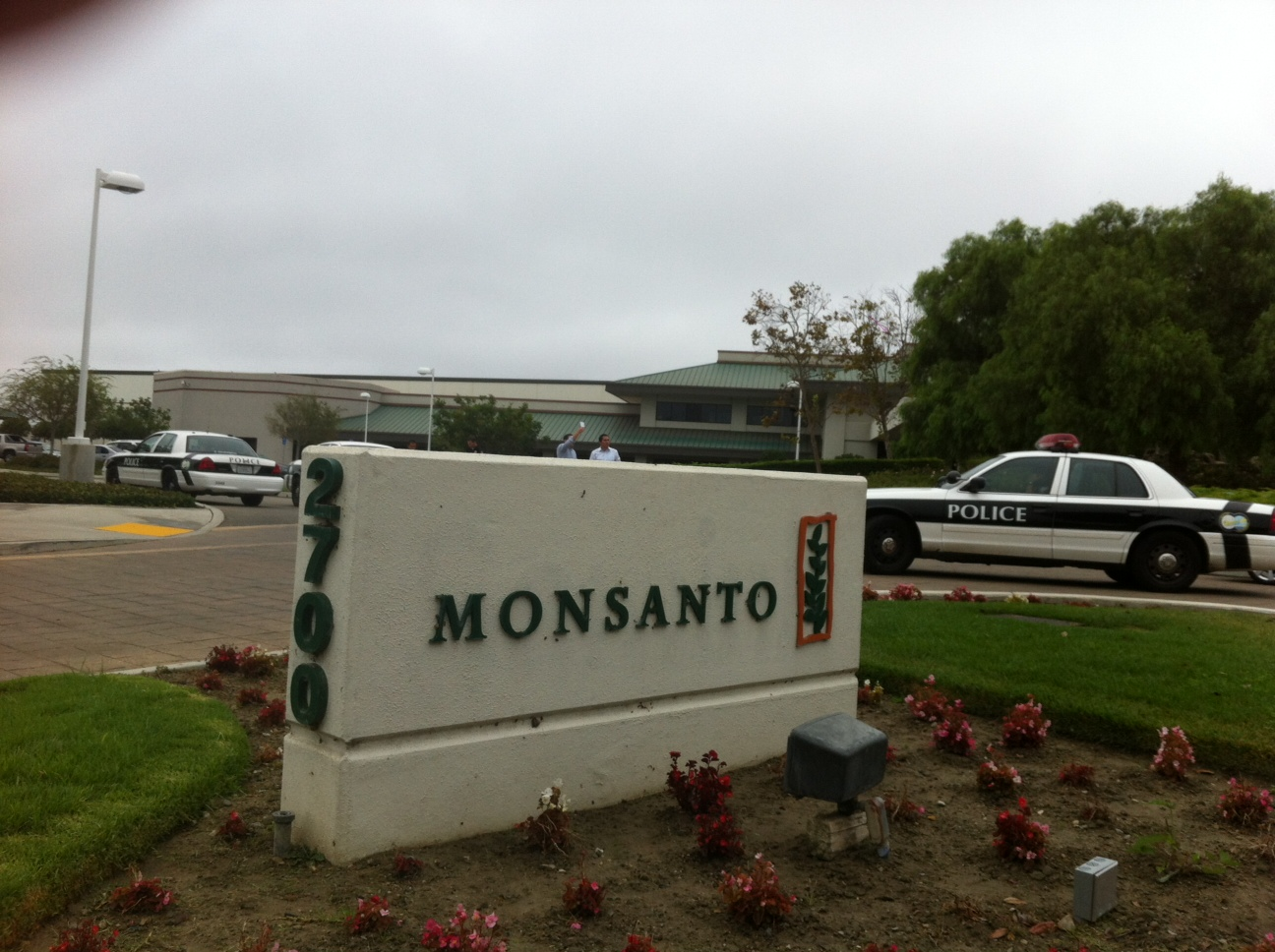 oxnard action photo 11 Photos of GCU Field Agents occupying Monsantos Oxnard facility Seminis Protest Oxnard Occupy Monsanto GMO Seeds GCU Direct Action Decontamination Event CA