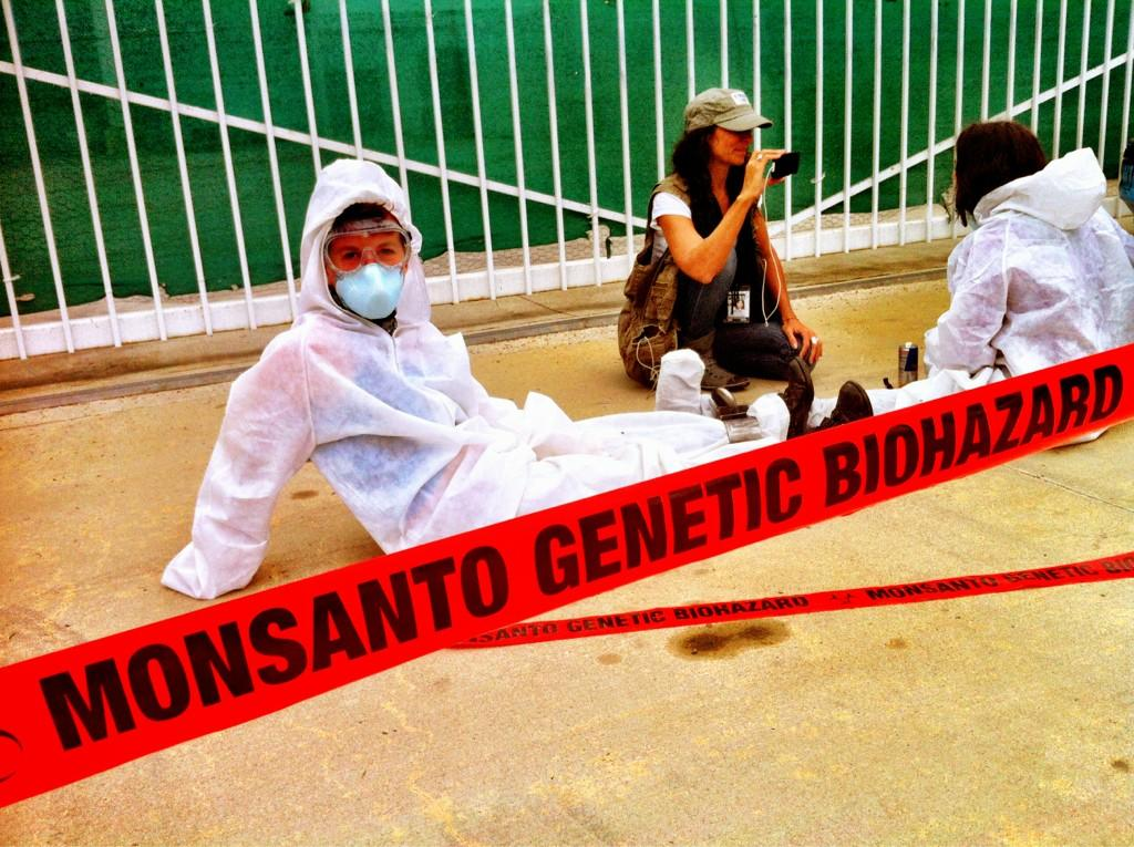 oxnard action photo 26 Photos of GCU Field Agents occupying Monsantos Oxnard facility Seminis Protest Oxnard Occupy Monsanto GMO Seeds GCU Direct Action Decontamination Event CA