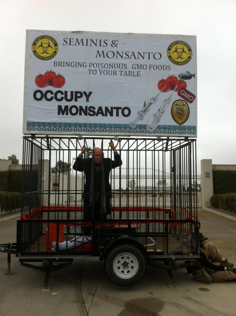 oxnard action photo 29 Photos of GCU Field Agents occupying Monsantos Oxnard facility Seminis Protest Oxnard Occupy Monsanto GMO Seeds GCU Direct Action Decontamination Event CA