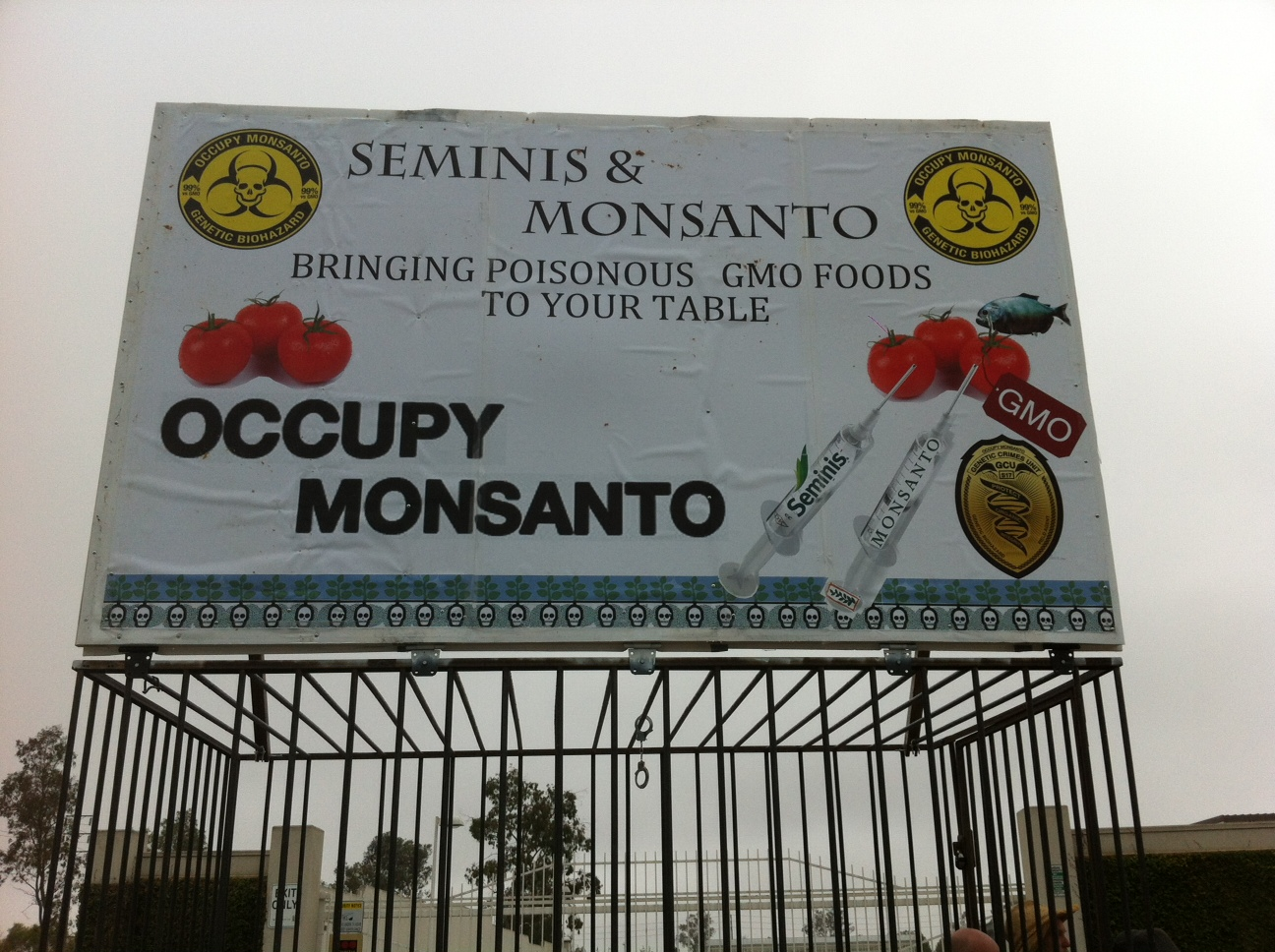 oxnard action photo 3 Photos of GCU Field Agents occupying Monsantos Oxnard facility Seminis Protest Oxnard Occupy Monsanto GMO Seeds GCU Direct Action Decontamination Event CA