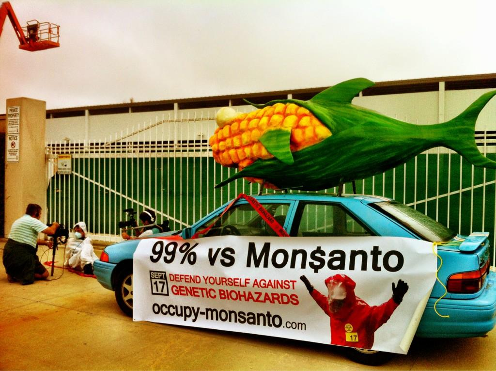 oxnard action photo 41 Photos of GCU Field Agents occupying Monsantos Oxnard facility Seminis Protest Oxnard Occupy Monsanto GMO Seeds GCU Direct Action Decontamination Event CA
