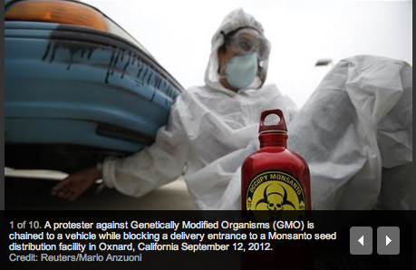 oxnard reuters mario anzuoni REUTERS: Protesters set sights on GMOs, close California facility trucks shut down Round Up Regulators Protest Police Oxnard Occupy Monsanto Mario Anzuoni gmo Genetically Modified Organisms Europe Dupont Dow Direct Action Demonstration Center for Food Safety cars California CA Arrests 