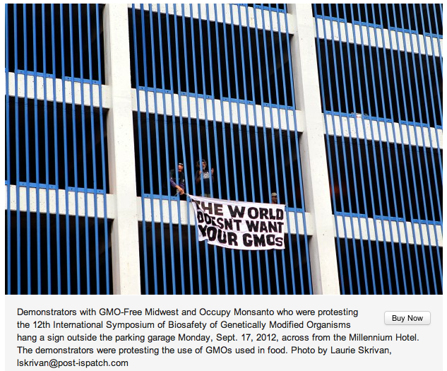 stl today banner drop laurie skrivan1 St. Louis Post Dispatch: Protesters rally against Monsanto STL St. Louis Post Dispatch St. Louis Safe Food Action St. Louis Rally Protest OWS Monsanto Millenium Hotel GMO Free Midwest GMO Labeling Georgina Gustin Gateway Green Alliance FDA Dr. Irina Ermakova Demonstration Barbara Chicherio 