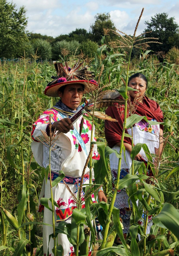 tlayolan4 e1347901916299 INCIDENT REPORT: Photos from the Tlayolan Maisfest 2012 in Berlin, Germany Rituals Maize GMO Free Germany Culture Corn Berlin Bantam Mais Aztec Maize Harvest Aztec