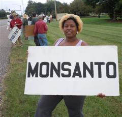 "06LowWashingtonC Occupy Monsanto in St. Louis: Action 3   ""Rats Who Eat 'em Already Know…"" Whole Foods Market street STL Stacy Park St. Louis signs road Rats Protest Picket Occupy Monsanto National Lawyers Guild Monsanto World Headquarters MO Missouri Millennium Hotel Maggie Ellinger Locke International Symposium on Biosafety of Genetically Modified Organisms GMOs GMO Free Midwest GMO Labeling Dr. Irina Ermakova Don Fitz Demonstration Creve Coeur Charles Jaco Barbara Chicherio banner"