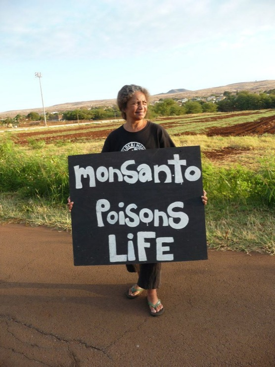 occupy monsanto molokai2 INCIDENT REPORT: Photos from GCU Field Agents in Molokai, Hawaii signs Protest pesticides organic Molokai Kids Island HI Hawaii GMO Free Molokai Farms Demonstration Chemicals