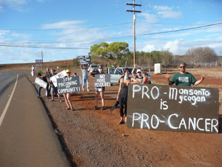 occupy monsanto molokai30 INCIDENT REPORT: Photos from GCU Field Agents in Molokai, Hawaii signs Protest pesticides organic Molokai Kids Island HI Hawaii GMO Free Molokai Farms Demonstration Chemicals