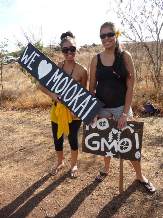 occupy monsanto molokai36 INCIDENT REPORT: Photos from GCU Field Agents in Molokai, Hawaii signs Protest pesticides organic Molokai Kids Island HI Hawaii GMO Free Molokai Farms Demonstration Chemicals