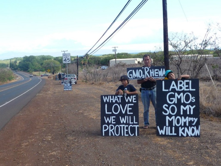 occupy monsanto molokai4 INCIDENT REPORT: Photos from GCU Field Agents in Molokai, Hawaii signs Protest pesticides organic Molokai Kids Island HI Hawaii GMO Free Molokai Farms Demonstration Chemicals