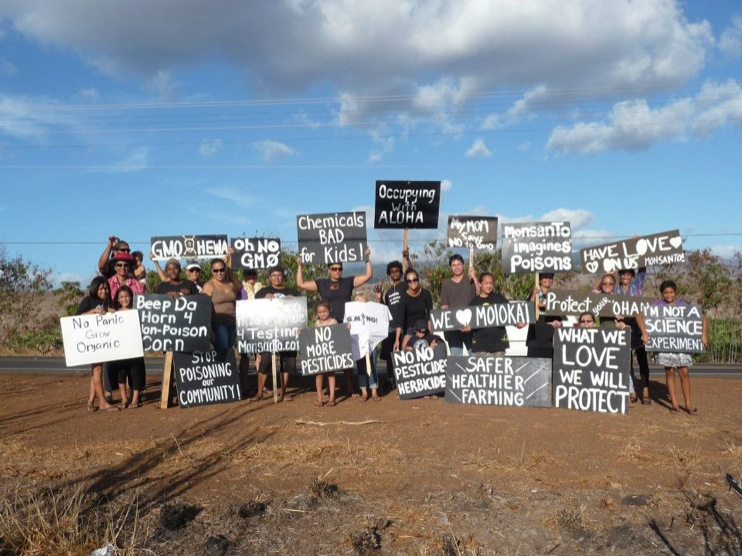 occupy monsanto molokai44 INCIDENT REPORT: Photos from GCU Field Agents in Molokai, Hawaii signs Protest pesticides organic Molokai Kids Island HI Hawaii GMO Free Molokai Farms Demonstration Chemicals 