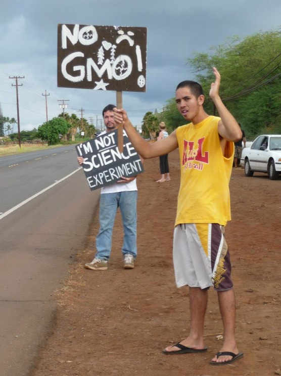 occupy monsanto molokai45 INCIDENT REPORT: Photos from GCU Field Agents in Molokai, Hawaii signs Protest pesticides organic Molokai Kids Island HI Hawaii GMO Free Molokai Farms Demonstration Chemicals