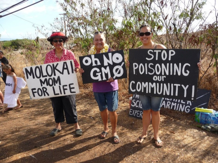 occupy monsanto molokai47 INCIDENT REPORT: Photos from GCU Field Agents in Molokai, Hawaii signs Protest pesticides organic Molokai Kids Island HI Hawaii GMO Free Molokai Farms Demonstration Chemicals