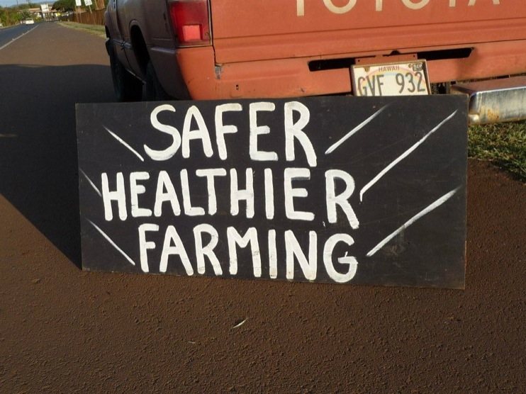 occupy monsanto molokai5 INCIDENT REPORT: Photos from GCU Field Agents in Molokai, Hawaii signs Protest pesticides organic Molokai Kids Island HI Hawaii GMO Free Molokai Farms Demonstration Chemicals