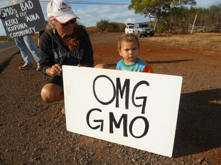 occupy monsanto molokai6 INCIDENT REPORT: Photos from GCU Field Agents in Molokai, Hawaii signs Protest pesticides organic Molokai Kids Island HI Hawaii GMO Free Molokai Farms Demonstration Chemicals