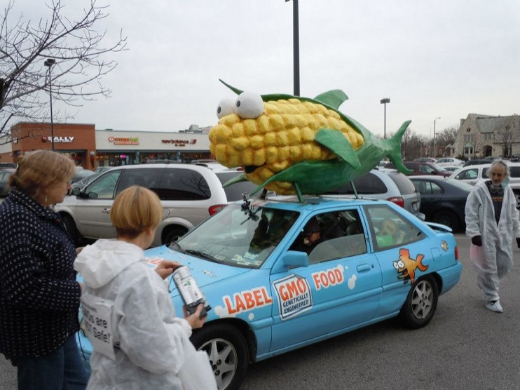 occupy monsanto gcu in stl8 INCIDENT REPORT: Genetic Contamination Found in St. Louis Grocery Stores Whole Foods Walmart Trader Joes Schnucks Safe Food Action St. Louis Organic Consumers Association Occupy Monsanto GMO Labeling Genetic Contamination Fishycorn Car Dierbergs