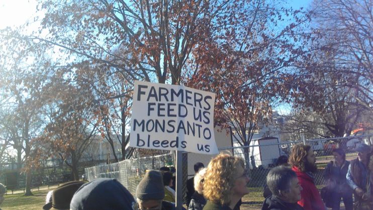OSGATA v Monsanto 8 Photos from the Citizens Assembly in Support of Organic Farmers Fighting Monsanto White House Washington U.S. Court of Appeals for the Federal Circuit Tara Cook Littman sugar beet soy Solidarity Seed Breeders Protest OSGATA et al v. Monsanto OSGATA Organic Farms Organic Farmers organic Oral Arguments Nick Marvel Monsanto Lisa Stokke Lafayette Square Jim Gerritsen GMO Free Connecticut GMO Labeling gmo Genetic Trespass Genetic Contamination Demonstration DC Dan Ravicher cotton Corn canola