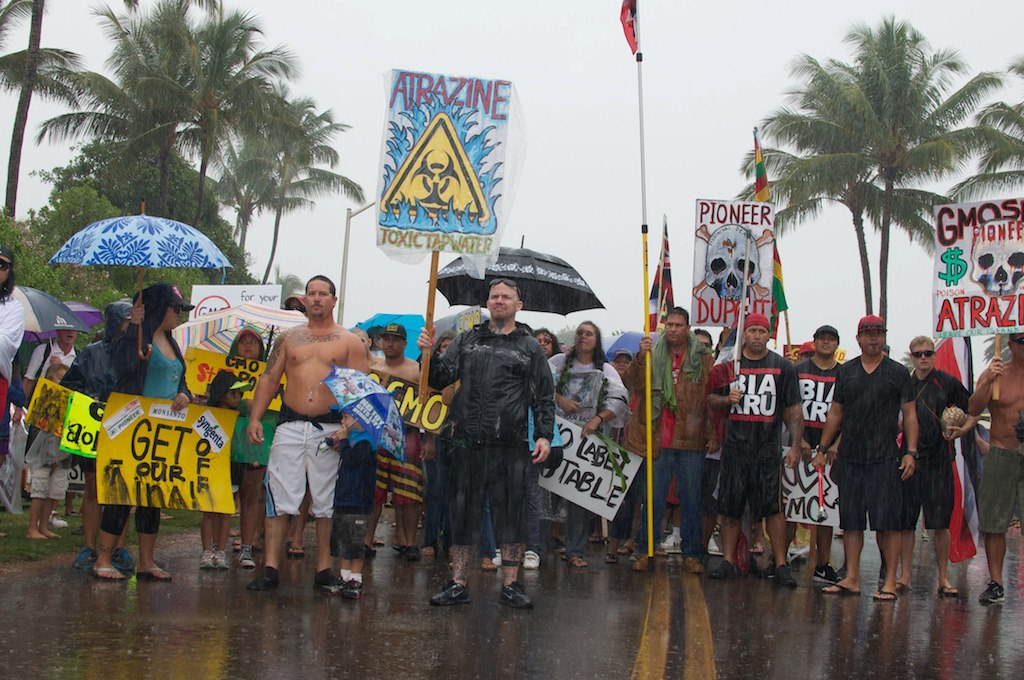 march in march to evict monsanto 3 9 2013 kauai3 INCIDENT REPORT: Thousands March in March to Evict Monsanto from Kauai Walter Ritte Testing Protest Poipu Photos pesticides March in March to Evict Monsanto Kauai GMO Labeling gmo Demonstration Chemicals agriculture