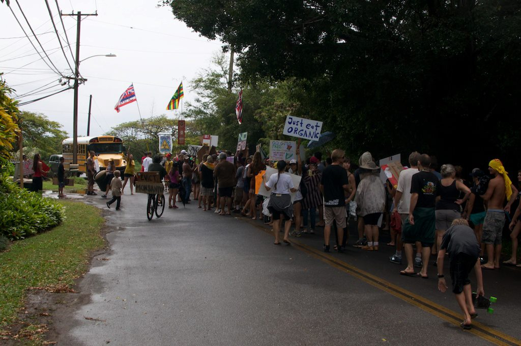 march in march to evict monsanto 3 9 2013 kauai4 INCIDENT REPORT: Thousands March in March to Evict Monsanto from Kauai Walter Ritte Testing Protest Poipu Photos pesticides March in March to Evict Monsanto Kauai GMO Labeling gmo Demonstration Chemicals agriculture