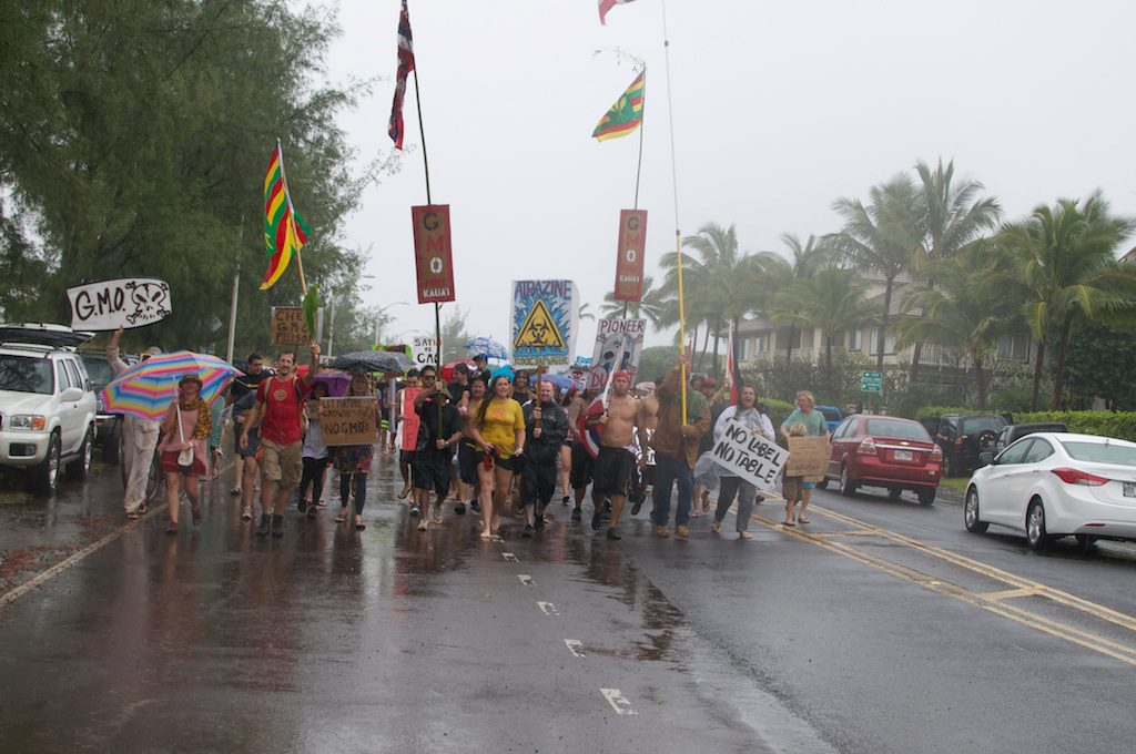 march in march to evict monsanto 3 9 2013 kauai5 INCIDENT REPORT: Thousands March in March to Evict Monsanto from Kauai Walter Ritte Testing Protest Poipu Photos pesticides March in March to Evict Monsanto Kauai GMO Labeling gmo Demonstration Chemicals agriculture