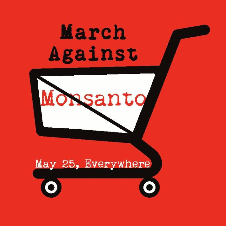 march against monsanto2 March Against Monsanto May 25, 2013 USDA Tumors Protest Organize organic Notes Monsanto Protection Act Monsanto March Against Monsanto March infertility GMO Seeds GMO Labeling gmo Global Day of Action FDA EPA Demonstration Congress Civil DisobedienceMarch Against Monsanto civil disobedience cancer Boycott birth defects Activism #OpMonsanto