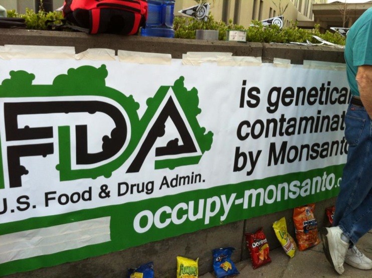 stone soup at the fda 19 Photos from the Stone Soup Eat In at the FDA stone soup Segment Protest Pot Picnic Photos Monsanto Michael Taylor MD Maryland Food and Drug Administration FDA facebook Fable eat in Demonstration College Park Center for Food Safety and Applied Nutrition America