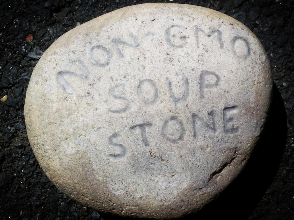 stone soup stone Eat In at the FDA to Label GMOs stone soup Sit In safe food Protest Picnic Michael Taylor GMO Labeling GMO Foods gmo Food Safety and Applied Nutrition FDA eat in Demonstration Be In